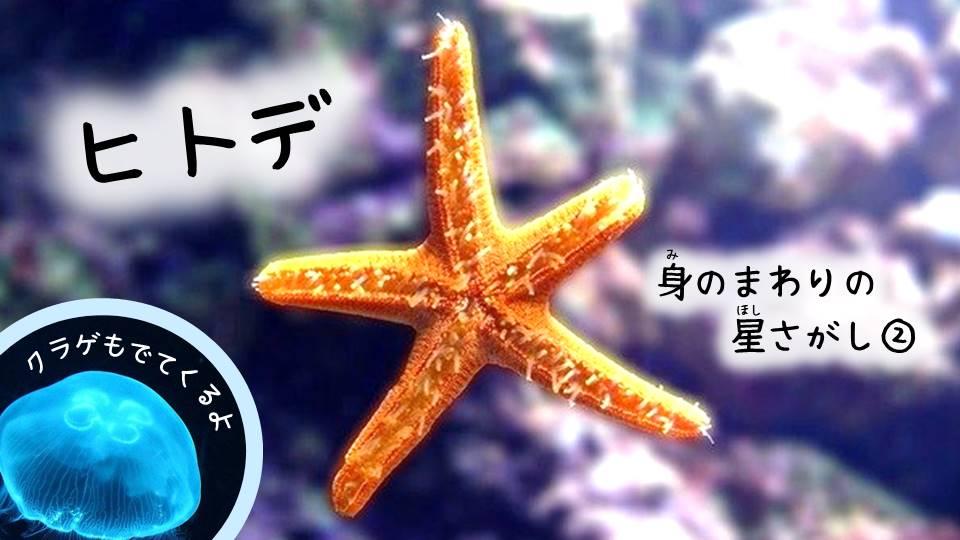 身の回りの星さがし2